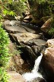 Waterval in de wildernis. Stock Fotografie
