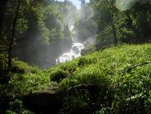 Waterval dichtbij Brienz, Zwitserland Stock Afbeeldingen
