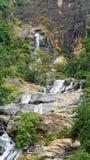 Waterval die onderaan berghelling drapeert Royalty-vrije Stock Afbeelding