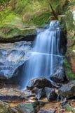 Waterval die over bemoste rotsen drapeert Blauwe Bergen, Australi? royalty-vrije stock foto