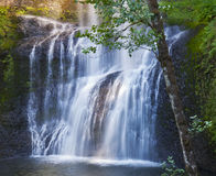 Waterval die over bemoste rotsen draperen stock afbeelding