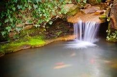 Waterval die in vijver morsen Stock Foto