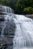 Waterval in diep bos Stock Fotografie