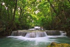 Waterval in diep bos Stock Afbeelding