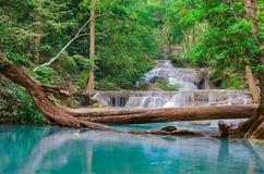 Waterval in Diep bos bij Erawan-waterval Nationaal Park, Royalty-vrije Stock Afbeelding