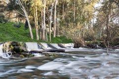 Waterval door boomstammen wordt omringd die Royalty-vrije Stock Afbeeldingen