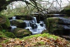 Waterval in een Bos Royalty-vrije Stock Foto