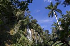 Waterval in een weelderig regenwoud Royalty-vrije Stock Afbeelding