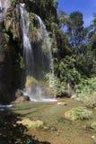 Waterval in een weelderig regenwoud Stock Afbeelding