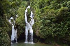 Waterval in een weelderige waterval van regenwoudvegas grande Stock Foto