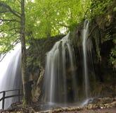 Waterval en de alleen boom Stock Foto