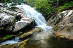 Waterval en het meest rainforrest Stock Afbeelding