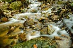 Waterval en het meest rainforrest Royalty-vrije Stock Fotografie