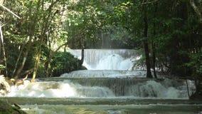 Waterval en water die in tropisch bos stromen stock video