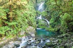 Waterval/fiordoland, Milford-spoor, Nieuw Zeeland royalty-vrije stock afbeeldingen