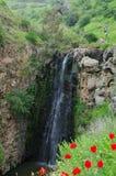 Waterval Gilbon Stock Fotografie