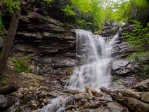 Waterval in Glen Onoko, Pennsylvania stock foto's