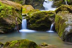 Waterval in groene aard Royalty-vrije Stock Foto