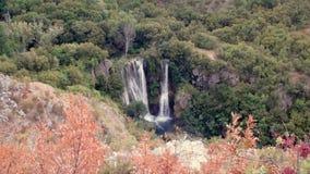 Waterval in groene boslandschapsmening stock videobeelden