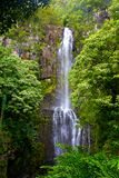 Waterval in Hawaï Stock Foto's