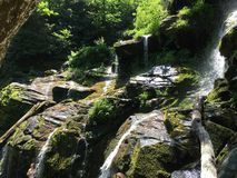 Waterval in heldergroene bemost Royalty-vrije Stock Foto's