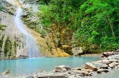 Waterval in het bos Stock Afbeelding