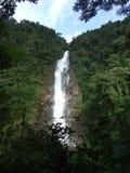 Waterval in het bos Royalty-vrije Stock Afbeeldingen