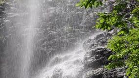 Waterval in het bos stock videobeelden