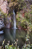 Waterval in het bos gebaad in zonlicht Stock Fotografie