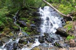 Waterval in het bos tussen rotsen Royalty-vrije Stock Afbeelding