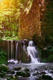 Waterval in het groene bos in Polen Royalty-vrije Stock Afbeeldingen