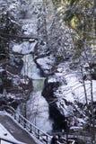 Waterval in het Hout stock afbeeldingen