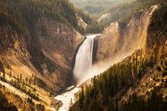 Waterval in het Nationale Park van Yellowstone royalty-vrije stock afbeelding