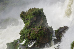 Waterval Iguacu Stock Foto's