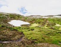 Waterval IJsland Royalty-vrije Stock Afbeelding