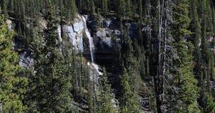 Waterval in Jasper National Park 4K stock video