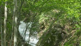 Waterval in Karpatische Bergen stock videobeelden