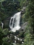 Waterval in Kerala Royalty-vrije Stock Fotografie