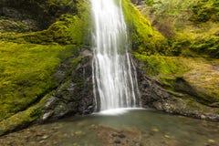 Waterval, Landschap, westkust, reis, toerisme, Oregon, OF, de V.S. stock afbeelding