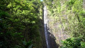 Waterval in Maui Hawaï stock video