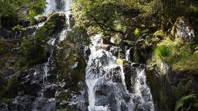 Waterval met groene rotsen stock footage