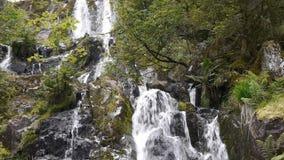 Waterval met rotsen in zwarte en groen stock video