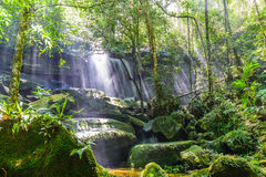 Waterval met zonnestraal in regenwoud stock afbeelding