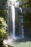 Waterval Misol Ha Stock Afbeeldingen