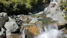 Waterval in Nieuw Zeeland royalty-vrije stock afbeeldingen