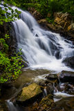 Waterval op Antietam-Kreek dichtbij Lezing, Pennsylvania Stock Foto