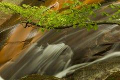 Waterval op de lente in het groene bos Royalty-vrije Stock Fotografie