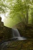 Waterval op de lente in het groene bos Stock Foto's