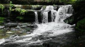 Waterval op Dunloup-Kreeklijn stock footage