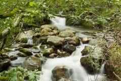 Waterval op Glendalough rivier, Ierland Royalty-vrije Stock Foto